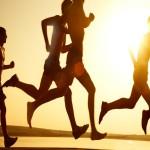 多摩川 季節のめぐみマラソン2013