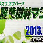 回綾・照葉樹林マラソン2013 日本が世界に誇れる綾町