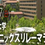 広島大学フェニックスリレーマラソン2013 メンズニップレス提供!